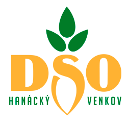 dso_logo.png